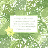 Tropic leaves background with frame for your text. Exotic banner template. Stock Photography