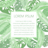 Tropic leaves background with frame for your text. Exotic banner template. Royalty Free Stock Photos