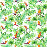 Tropic leaves, exotic bird flowers. Repeating pattern. Watercolor. Tropic leaves and exotic bird flowers. Repeating pattern. Watercolor Stock Photography