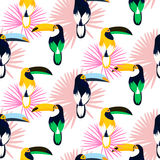 Tropic light pink plant leaves and toucan bird seamless pattern. Stock Photography