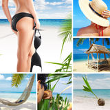 Tropic mix Stock Images
