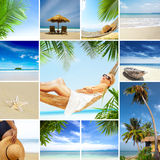 Tropic mix Stock Photography