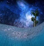 Tropic Night Underwater Scene Stock Images