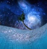 Tropic Night Underwater Scene Royalty Free Stock Photos