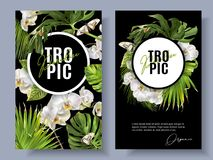 Tropic orchid banners. Vector botanical vertical banners with tropical leaves, orchid flowers and butterflies on black. Design for cosmetics, spa, health care vector illustration
