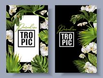 Tropic orchid frames. Vector botanical vertical banners with tropical leaves, orchid flowers and butterflies on black. Design for cosmetics, spa, health care vector illustration