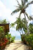 Tropic outdoor Stock Photo