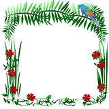 Tropic parrot frame Stock Image