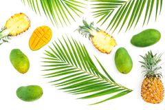 Tropic pattern of pineapple and mango fruits with palm leaves on white background. Flat lay, top view. Tropical concept. Tropic pattern of pineapple and mango royalty free stock images