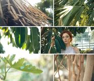 Tropic garden plants collage with red hair girl royalty free stock photography