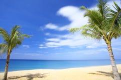 Tropic scene Royalty Free Stock Photo
