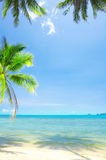 Tropic scene Royalty Free Stock Photography