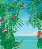 Tropic Sea Stock Photography