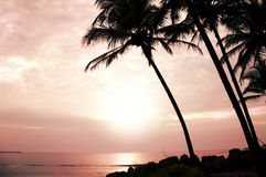 Tropic sea landscape stock images
