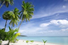 Tropic sea Stock Image