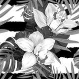 Tropic seamless pattern stock illustration