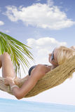 Tropic shot Stock Images