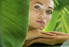 Tropic spa Stock Photos