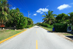 Tropic street in residence Stock Image