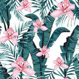 Tropic summer painting seamless pattern with palm banana leaf and plants. royalty free illustration