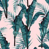 Tropic summer painting seamless vector pattern with palm banana leaf and plants. royalty free illustration