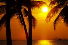 Tropic sunset Stock Photo