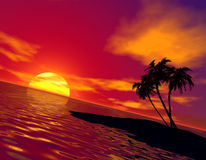 Tropic sunset Royalty Free Stock Photos