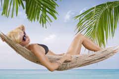 Tropic swing Stock Photography