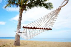 Tropic swing Stock Image