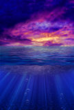 Tropic Twilight vector illustration