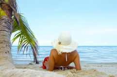 Tropic vacation Stock Images