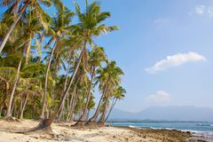 Tropic veiw on sea Stock Photography