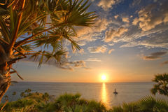 Free Tropic View Stock Photo - 18875760