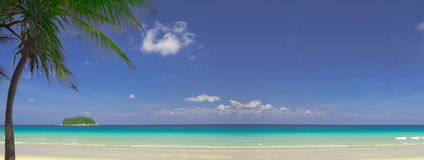 Tropic view. View of nice tropical empty sandy beach with some palm. Banner, lots of copy space stock image