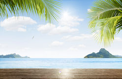 Tropic view Royalty Free Stock Photos