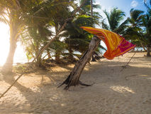 Tropica beach. Amaca fluts on a tropical beach by seaside Royalty Free Stock Image