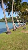 tropical Images libres de droits