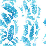 Tropical abstract background. Tropical background seamless pattern of imitation of watercolor palms. Botanical vector wallpaper Royalty Free Stock Images