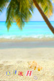 Tropical aloha. Aloha on a mound of sand on a hawaiian tropical  beach with palm tree and ocean in the background Royalty Free Stock Photo