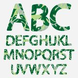 Tropical alphabet made of monstera palm leaves. Hand drawn green p. Aradice abc. Natural summer letters. Vector illustrated design Stock Photos