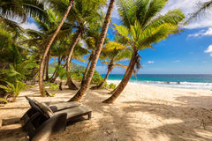 Tropical Anse Intendance beach at Seychelles in Mahe Island Stock Images