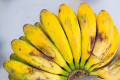 Tropical Apple Bananas Royalty Free Stock Image