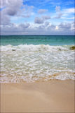 Tropical au Mexique Playa del Carmen Images libres de droits
