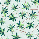 Tropical Australian foxtail palm seamless pattern Royalty Free Stock Photo