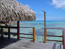 Tropical Back Porch With A View. Over-water bungalow outside deck with outdoor shower, a ladder into the clear blue water and a view of the South Pacific royalty free stock images