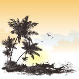 Tropical backgraund. Vector tropical backgraund bird, sea, sky, palm Royalty Free Stock Images