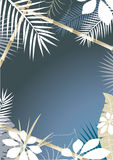 Tropical Background vector illustration