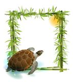 Tropical  background. With bamboo, sun and sea turtle Stock Photography