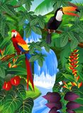 Tropical background Royalty Free Stock Photography