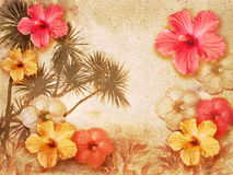 Tropical background. Tropical retro background decorated with hibiscus flowers Stock Image